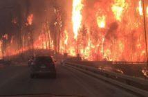fire.jpg-large Alberta