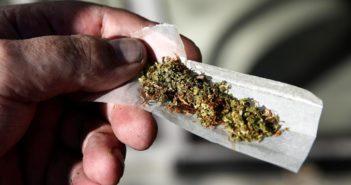 Kanada zalegalizowała rekreacyjną marihuanę